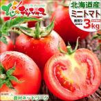 【予約】 北海道 南幌町産 ミニトマト ラブリー藍 3kg 北海道産 プチトマト カラートマト フルーツトマト ギフト 贈り物 自宅用 北海道 送料無料 お取り寄せ