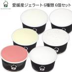 アイスクリーム ジェラート 6個セット 愛媛産ジェラート6種類 詰め合わせ 寒中お見舞い ギフト プレゼント お祝い 御歳暮