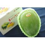 キーツマンゴー通販 幻のグリーンマンゴーを販売取寄。大玉1玉 約500g以上 沖縄産・静岡産