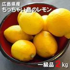 広島県産 レモン 2kg 一級品 皮まで食べられます ちっちゃい島のレモン 国産 広島県呉市豊浜 狭間農園