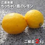 広島県産 レモン 2kg 二級品 皮まで食べられます ちっちゃい島のレモン 国産 広島県呉市豊浜 狭間農園