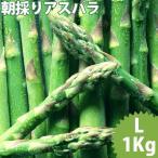 送料無料 北海道産 グリーンアスパラガス 1kg Lサイズ / 国産 国内産 産地直送 お取り寄せ 新鮮 ギフト 旬 露地物