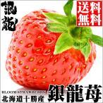 北海道産 銀龍苺「さがほのか」(2シート) / 送料無料 いちご イチゴ 産地直送 十勝 フルーツ 果物