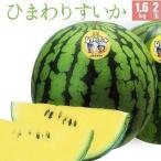 ひまわりすいか 優品 1.8kg 2玉 北海道 北竜町産