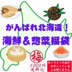 【送料込】がんばれ北海道!海鮮&惣菜福袋(梅:5000円)