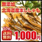 おつまみ 送料無料 ししゃも 寒干し 北海道産 50g 珍味 無添加