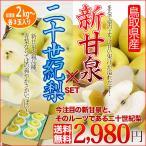 新甘泉 二十世紀梨 鳥取県産 梨 セット 送料無料 新品種 20世紀梨 後継梨 食べ比べ
