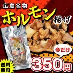 ポイント消化 500円 ポッキリ 送料無料 おつまみ 広島名物 ホルモン揚げ 塩味 36g 1袋