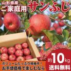 りんご 訳あり 10キロ サンふじ 山形県産 ご家庭用 産地直送 林檎 リンゴ 10kg【12月中旬から下旬発送】