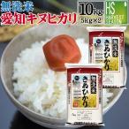 無洗米 5kg×2 キヌヒカリ 三重県産 10kg 29年産 送料無料 数量限定