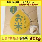 しきゆたか 白米 30kg 30年産「近江米」 <送料無料> 「もちもち」食感で食べごたえのある大粒!【低農薬の特別栽培米】