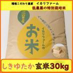 しきゆたか 玄米 30kg 30年産「近江米」 <送料無料> 「もちもち」食感で食べごたえのある大粒!【低農薬の特別栽培米】
