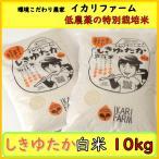 しきゆたか 白米 10kg 30年産「近江米」 <送料無料> 「もちもち」食感で食べごたえのある大粒!【低農薬の特別栽培米】