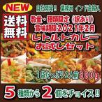 ポイント消化 インドカレー レトルト 選べる2種 業務用 300g  2食セット 送料無料 (1袋2人前x2) セール