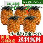 ゴールドパイン5kg(3〜6玉)沖縄石垣島産 送料無料
