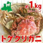 トゲクリガニ 中サイズ(メス)約1kg6〜7ハイ(塩茹で)青森陸奥湾産とげくりがに(栗ガニ・カニ・蟹)