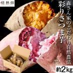 【平成30年度 鹿児島県垂水市産】 数量限定 隼人芋 パープルスイートロード 約2kg サイズおまかせ お試し 食べ比べ 送料無料 さつまいも 生芋 食べやすい 安心