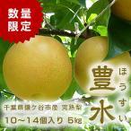 千葉県 鎌ケ谷 梨 かまたんのふるさと梨 完熟梨・豊水 5kg(10〜14個)