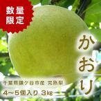 千葉県 鎌ケ谷 梨 かまたんのふるさと梨 完熟梨 かおり 3kg(4〜5個)