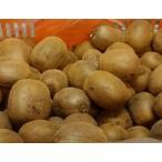 (お中元・お歳暮)キウィ4kg(食べ頃キウイ)(わけあり)国産 (和歌山産キウイフルーツ4kg)(サイズ混)(20〜50個)