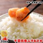 お米 20kg (5kgx4袋) 千葉県産 ふさおとめ 熨斗紙 名入れ ギフト対応 平成30年産