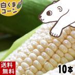 (送料無料)白いとうもろこし 白くまコーン ピュアホワイト 10本入り 生食 北海道産スイートコーン 朝もぎ生とうきびお取り寄せ