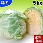 (送料無料)北海道産 越冬キャベツ 合計4.5kg(2〜4玉入り)雪の下キャベツ イチゴより甘い雪下キャベツ 糖度10度