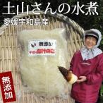 【30年産】 愛媛宇和島産 千切りたけのこ水煮150g(無漂白・薬品不使用) タケノコ(モウソウダケ)の根本の硬い部分を千切り。