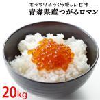 30年度 青森県産つがるロマン20kg 送料無料