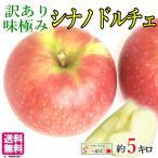 10%OFF 朝どれ シナノドルチェ 秋映 訳あり 味極み 長野産 りんご 減農薬 5キロ