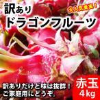 ご家庭用 訳ありドラゴンフルーツ赤玉4kg 送料無料