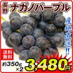 ぶどう 長野産 ナガノパープル 2房1箱 送料無料 葡萄 ブドウ 食品