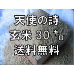 【29年産】【残留農薬検出なし】天使の詩 玄米 30kg  九州 佐賀県産 送料無料 精米無料 小分け無料