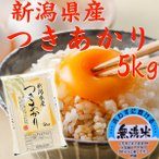 (無洗米)新潟県産 米  5kg×1袋  お米 つきあかり5キロ 30年産 新米 美味しいお米 無洗米新米