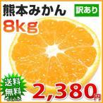 みかん 送料無料 訳あり 8kg 熊本  ポイント消化 ミカン 蜜柑 くまもと フルーツ