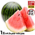 冬すいか スイカの本場熊本県産 くまもと 1玉 約4.5kg前後〜約6kg前後 送料無料 2月末-3月中旬頃より順次出荷