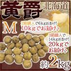 """【送料無料】北海道 北見産 じゃがいも """"黄爵"""" 秀品 Mサイズ 約2kg《2箱購入で10kgでお届け 3箱購入で20kgでお届け》男爵芋【予約 8月中下旬以降】"""