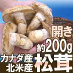 """【送料無料】カナダ・北米産 """"松茸"""" 開き 2〜6本 約200g【予約 10月以降】"""