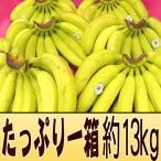 """フィリピン産 """"バナナ"""" 5〜6房入り 約13kg"""