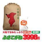 30年産 米 お米 10kg ふさこがね 白米 玄米 発送可能 送料無料
