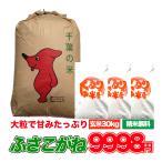 30年産 米 お米 30kg ふさこがね 白米 玄米 発送可能 送料無料