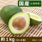 「国産(広島県) アボカド 約1kg (4〜6玉)」フェルテ種
