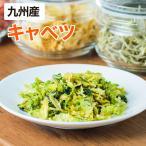 乾燥野菜 キャベツ 1袋28g 生野菜310g相当 九州産野菜 安心安全国産 長期保存が可能なエアドライ 非常食 保存食 備蓄食