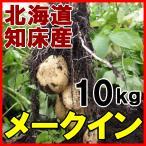 北海道産越冬じゃがいも!【メークイン10kg】知床の麓より産地直送!