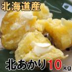 知床海洋ミネラル栽培品!栗じゃがいも【北あかり10kg】北海道産ジャガイモを産地直送!