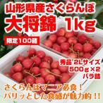 【予約】 プレゼント ギフト さくらんぼ 大将錦 山形県産 1kg(500×2P) 2L バラ詰バラ詰