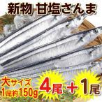 大サイズ 新物 甘塩さんま4尾+オマケ1尾! 塩さんま(合計5尾)