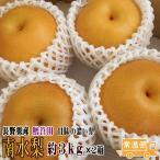 南水梨 贈答用 約3kg×2箱 長野県産 予約 送料無料 フルーツ ギフト ジューシーで甘みの濃い梨 ナシ なし