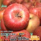 訳あり りんご サンふじ 約10kg Cランク 家庭用 糖度13度以上 長野県産 送料無料 フルーツ リンゴ 信州