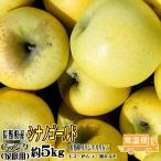 訳あり りんご シナノゴールド 約5kg Cランク 家庭用 CA貯蔵 長野県産 送料無料 フルーツ リンゴ 信州